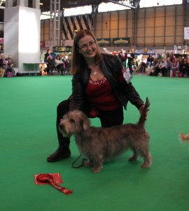 Crufts 2014 First in Open Class
